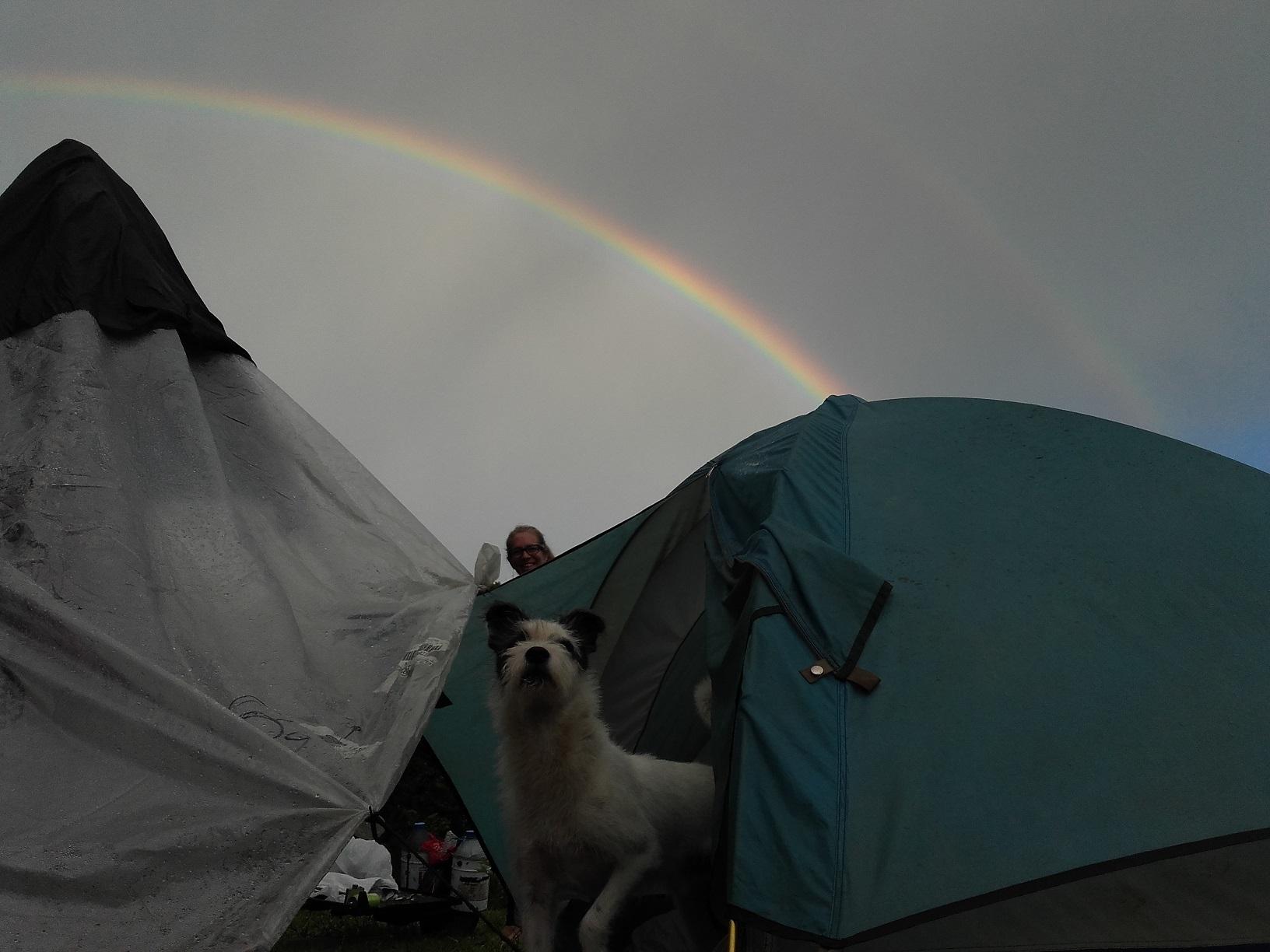 tobes rainbow